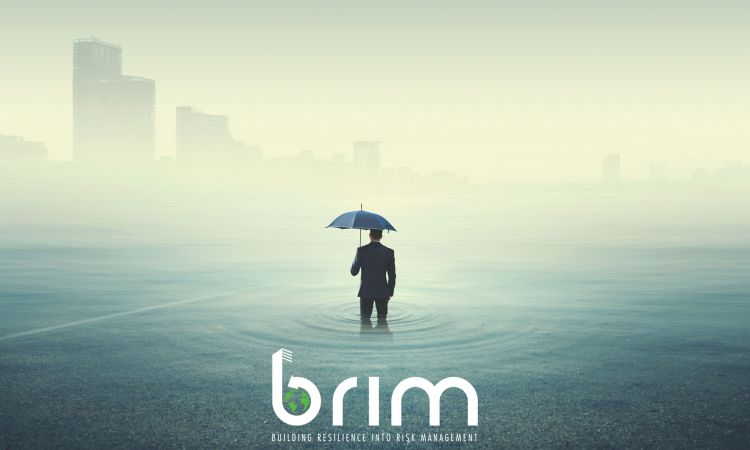 Launch of the Building Resilience Into Risk Management (BRIM) website